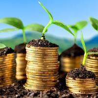Bagaimana cara menempatkan uang yang aman? Adrian Maulana akan menjawabnya dalam tulisan 'Bersahabat dengan Risiko' ini. (Ilustrasi: af-advisors.nl)