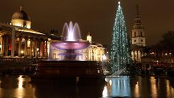 Kolam air mancur memantulkan refleksi pohon natal Norwegia setelah lampunya dinyalakan dalam upacara di Trafalgar Square, London, Kamis (6/12). Pohon cemara itu merupakan pohon natal hadiah tahunan dari kota Oslo kepada rakyat Inggris. (AP/Matt Dunham)