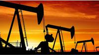 Harga minyak dunia kembali tertekan seiring permintaan melambat, sedangkan produksi minyak melimpah dan kekhawatiran ekonomi global.