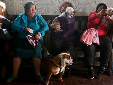 Orang-orang dan hewan peliharaan mereka menunggu untuk diberkati dalam perayaan Santo Fransiskus dari Asisi di gereja San Fransisco, Chile, Kamis (4/10). Perayaan Santo Fransiskus dari Asisi dipercaya sebagai Santo pelindung binatang. (AP/Esteban Felix)