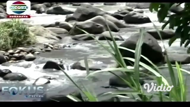 Aksi heroik seorang Kepala Desa di Kabupaten Probolinggo, Jawa Timur menuai pujian khalayak saat dia berusaha menyelamatkan warga yang terjebak di tengah arus deras sungai.