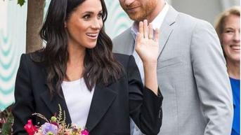 Sering Bicara Perubahan Iklim, Pangeran Harry dan Meghan Markle Berulang Kali Naik Jet Pribadi