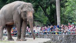 Pengunjung melihat gajah di Ragunan, Jakarta, Minggu (25/12). Harga tiket masuk yang murah menjadi salah satu alasan pengunjung memilih Ragunan sebagai tempat rekreasi bersama keluarga. (Liputan6.com/Helmi Afandi)