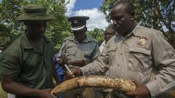 Petugas berwenang Malawi memeriksa gading gajah selundupan dari Tanzania sebelum dimusnahkan dengan cara dibakar, Senin (14/3/2016). Gading sebanyak 781 buah tersebut senilai hampir USD3 Juta (sekitar Rp39 miliar). (AMOS GUMULIRA/AFP)