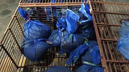 Puluhan trenggiling berada di dalam karung setelah diselamatkan dari perdagangan liar di provinsi Ha Tinh, Vietnam (30/7/2019). Trenggiling di Vietnam merupakan mamalia yang terancam punah dan sangat berharga. (AFP Photo/Save Vietnam's Wildlife)