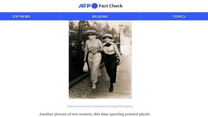 Gambar Tangkapan Layar Artikel dari Situs factcheck.afp.com