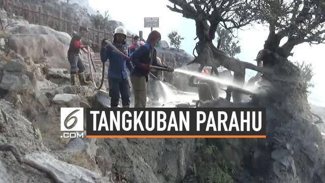 Hari Kamis (1/8) rencananya lokasi wisata Tangkuban Parahu akan kembali dibuka. Saat ini petugas masih bekerja keras bersihkan abu vulkanik. Simak kondisi terkininya.