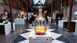 Anggur berisi tikus dalam Disgusting Food Museum atau Museum Makanan menjijikan di Malmo, Swedia, 4 November 2018. Pengunjung bisa mencium, menyentuh, dan mencicipi makanan di seluruh dunia yang dianggap menjijikkan. (Johan NILSSON/TT NEWS AGENCY/AFP)