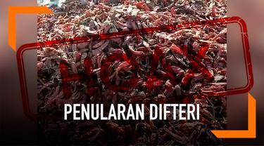 Penyakit difteri dikabarkan kembali merebak di Jakarta. Kabar ini viral di Facebook sejak beberapa hari lalu.