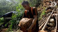 "Emas bagi warga Desa Citorek, Kecamatan Cibeber Banten yang kini daerahnya terkenal dengan ""Negeri di Atas Awannya"" telah menjadi napas kehidupan sejak puluhan tahun lalu. (merdeka.com/Arie Basuki)"