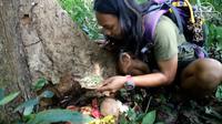 Pria Ini Mukbang Sesajen di Tengah Hutan  (Sumber: YouTube/dede inoen)