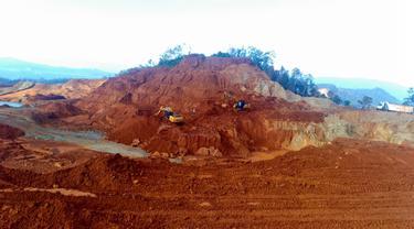 PT PAM Mineral Tbk