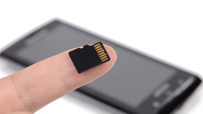 Opsi microSD. (Doc: eBay)