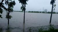 Sejauh mata memandang, banjir menggenangi persawahan dan permukiman warga Kebumen. (Foto: Liputan6.com/Pusdalops BPBD Kebumen /Muhamad Ridlo)