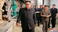 Pemimpin Korea Utara, Kim Jong-un saat meninjau Sinuiju Chemical Fiber Mill di Sinuiju, Korea Utara (2/7). (Korean Central News Agency/Korea News Service via AP)