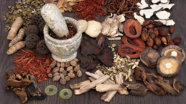 obat tradisional untuk daya tahan tubuh