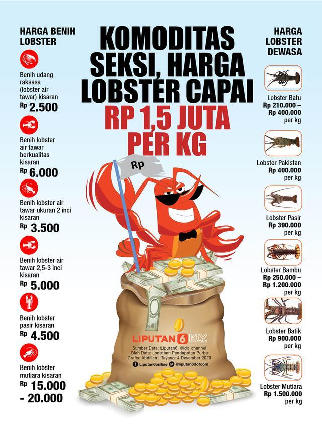 INFOGRAFIS: Komoditas Seksi, Harga Lobster Capai Rp 1,5 Juta per Kg (Liputan6.com / Abdillah)