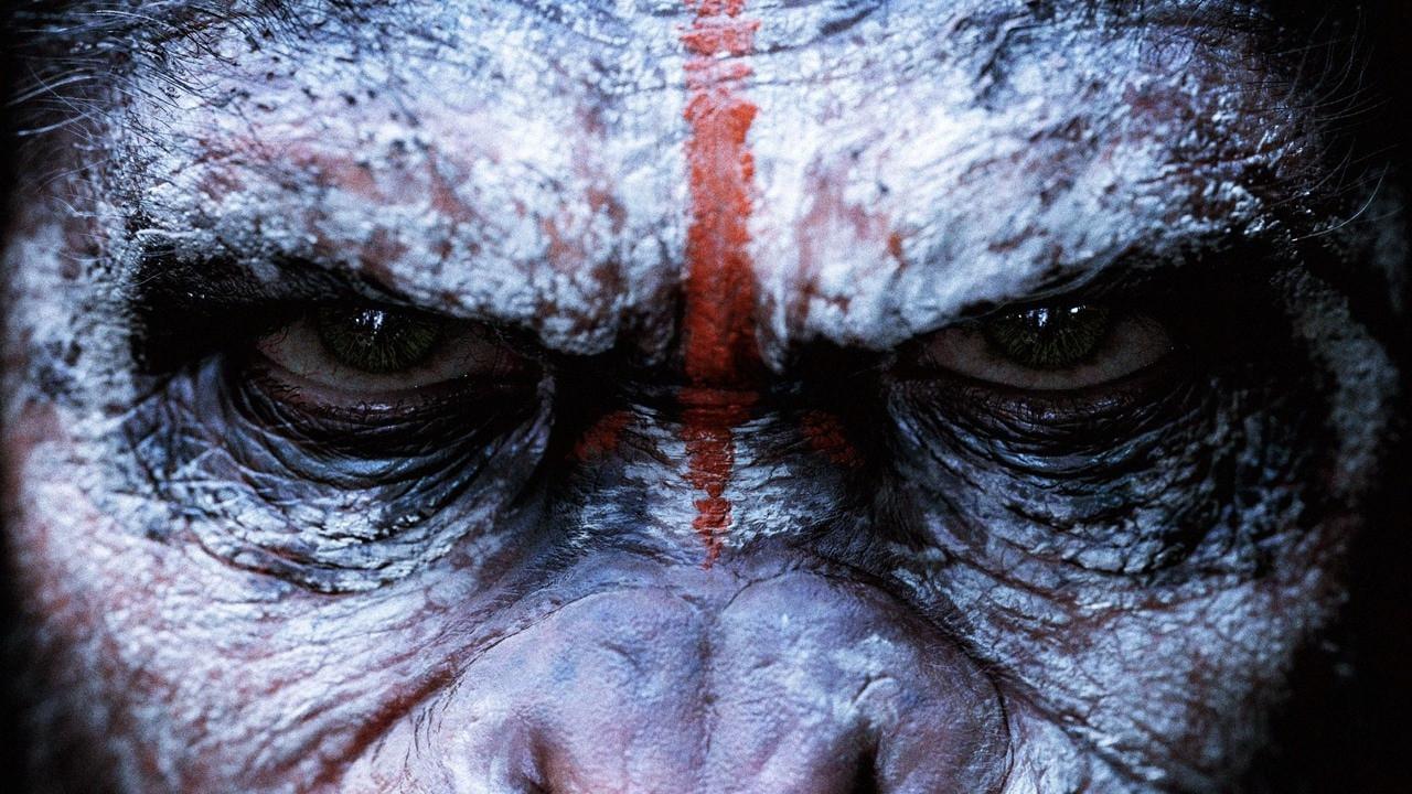 Menyelami Kisah Miris Di War For The Planet Of The Apes Showbiz Liputan6 Com