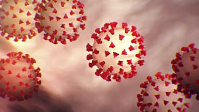 Strain Baru Virus Corona Penyebab Covid 19 Di Inggris Penularan 70 Persen Lebih Cepat Health Liputan6 Com