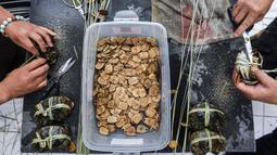 Sejumlah peternak kepiting mengikat dan memasang label pada kepiting di sebuah pusat pembudidayaan di Distrik Wuxing di Huzhou, Provinsi Zhejiang, China, 23 September 2020. Pusat pembudidayaan kepiting seluas sekitar 933 hektare di Wuxing tersebut baru-baru ini memasuki musim panen. (Xinhua/Xu Yu)