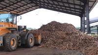Kementan memberikan bantuan pengembangan ubi kayu berupa sarana produksi sebesar 1.400 hektar di Kabupaten Bangka dan Bangka Barat. Dok Kementan