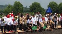 Iriana Jokowi menanam mangrove di Batam, Kepulauan Riau. (Lizsa Egeham/Liputan6.com)