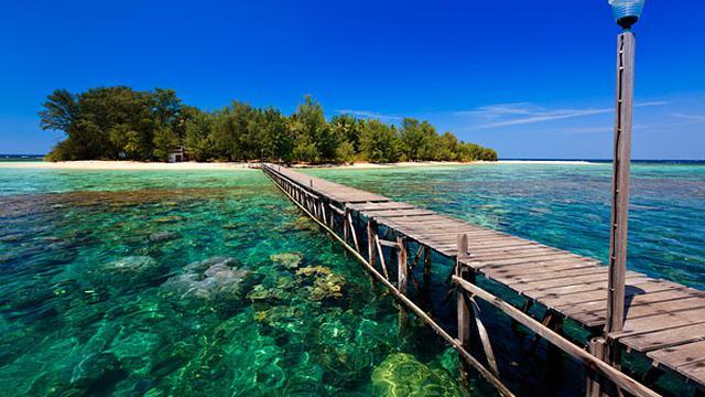 Hasil gambar untuk 2. Wisata Laut Karimunjawa