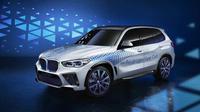 BMW X5 FCEV (ist)
