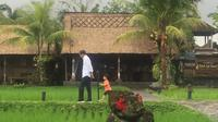 Disela-sela kunjungan kerjanya di Bali, Presiden Joko Widodo atau Jokowi menyempatkan untuk menemani sang cucu Jan Ethes Srinarendra bermain di pinggir sawah. (Lizsa Egeham/Liputan6.com)