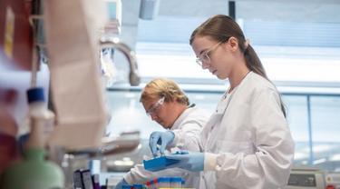 Vaksin Oxford / AstraZeneca saat ini sedang dalam tahap pengujian akhir.