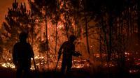 Petugas pemadam kebakaran berusaha memadamkan api di desa Cardigos di Macao, Portugal tengah (21/7/2019). Empat petugas pemadam kebakaran dilaporkan tersengat api, dan tiga lainnya terluka setelah mobil mereka bertabrakan satu sama lain. (AFP Photo/Patricia De Melo Moreira)