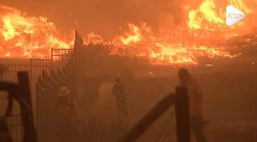Kebakaran hebat di California memicu Donald Trump mencuit di akun Instagramnya.