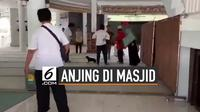 Kronologi Wanita Bawa Anjing Ke Dalam Masjid Bogor