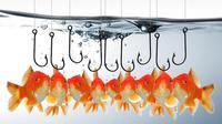 Phishing - ilustrasi (itpro)