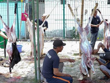 Petugas menyembelih hewan kurban di kawasan Masjid Agung Al Azhar, Jakarta, Selasa (21/8). (Liputan6.com/Immanuel Antonius)