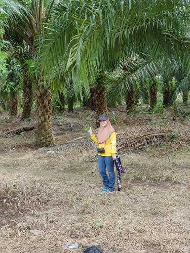 Ricca Susana (37) Pengepul Tandan Buah Segar (TBS) sawit asal Pangkalan Bun, Kalimantan Tengah.