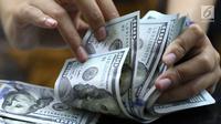 Petugas menghitung uang pecahan dolar Amerika di salah satu gerai penukaran mata uang di Jakarta, Jumat (18/5). Pagi ini, nilai tukar rupiah melemah hingga sempat menyentuh ke Rp 14.130 per dolar Amerika Serikat (AS). (Liputan6.com/Immanuel Antonius)