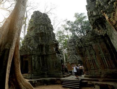 Kuil Ta Prohm Kamboja