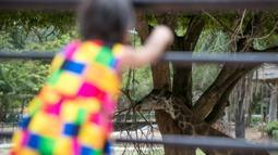 Seorang anak perempuan mengunjungi Khao Kheow Open Zoo di Provinsi Chonburi, Thailand, Selasa (16/6/2020. Enam kebun binatang di Thailand akan kembali dibuka bagi pengunjung secara gratis mulai 15 hingga 30 Juni. (Xinhua/Zhang Keren)