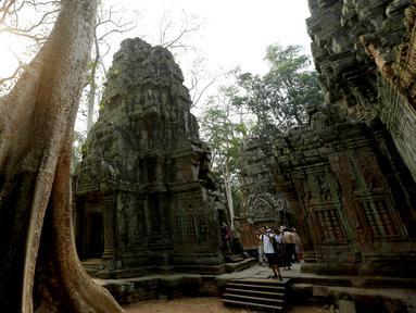 Wisatawan mengunjungi kompleks kuil Ta Prohm di provinsi Siem Reap, Kamboja. Kuil yang semakin populer semenjak digunakan untuk lokasi syuting film Tomb Raider tersebut memiliki nilai sejarah tinggi dan masih terjaga keasliannya. (REUTERS/Samrang Pring)