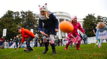 Sejumlah bocah saat mengikuti lomba menggelindingkan telur di halaman Gedung Putih, Washington (4/2). Lomba yang digelar rutin setiap tahunnya di Gedung Putih ini untuk merayakan hari raya Paskah. (AP Photo/Pablo Martinez Monsivais)