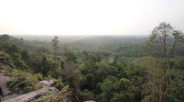 Bukit Soeharto